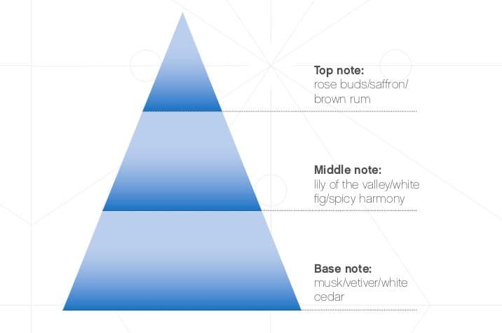 Nescens - Candela profumata - Tè nero - Piramide olfattiva